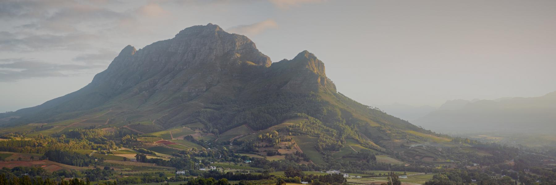 Simonsberg Mountain from Capensis' Fijnbosch vineyards
