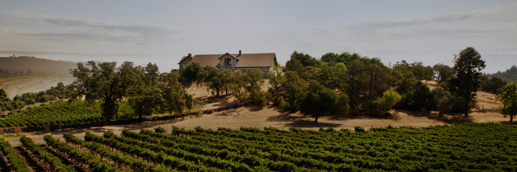 Cardinale estate, Napa Valley, California